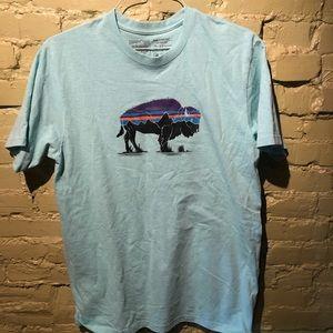 Patagonia Fitz Roy Responsibili tee Bison t shirt